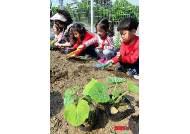 '어린이 도시농업체험장 모종심기'