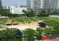 영등포구, 내달 5일까지 도시텃밭 농사꾼 모집