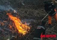 평창군, 산림보호법 위반자 처벌 강화