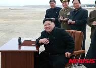 北김정은, 인니 반둥회의 불참…김영남 파견