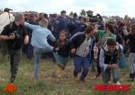 극우성향 헝가리 여성 카메라맨 난민 걷어차는 모습, 국제사회에 파문