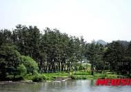 나주시, 조선시대 전통 하천숲 남평 '십리송 복원'