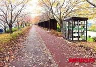 사상구 '벚꽃명소' 낙동제방 공원화사업 완료