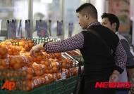 일본 11월 소비자물가지수 상승률 0.3%