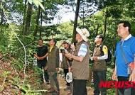 태백시, 대덕산·금대봉 생태 해설가 모집