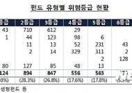 """레버리지·신흥국투자 펀드 손실위험 커…""""위험등급 확인하세요"""""""