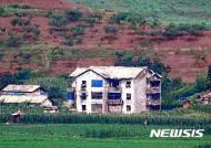 북한 옥수수 농사