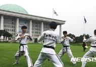 예원대학 선수들의 태권도 시범