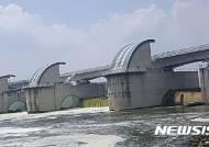 낙동강 강정고령보 조류경보…위협 받는 대구 식수원