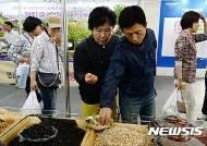 '전주국제발효엑스포' 청국장 콩 맛보는 관람객들