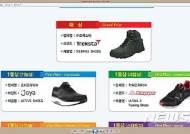 국제첨단신발기능경진대회, 대상 'WEBPIKE Shoes' 선정