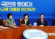 """민주당 """"승부수 던진 김무성과 탄핵 공조"""""""