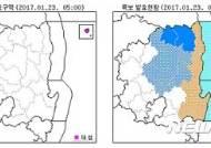 대구경북 체감온도 뚝…울릉도·독도 눈비 소식