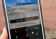 경찰, 외국인 체류정보 조회시스템 이용 불법체류자 검거