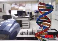 [떠오르는 유전자 가위①]암·에이즈 등 난치병 치료시대 성큼
