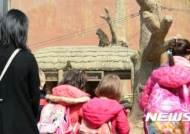 과천 서울대공원 동물원 재개장
