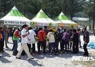 '청정 고랭지의 봄'···삼척 하장 두타산 산나물 축제 개최