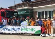 농협 상호금융자산운용본부 농촌 일손돕기