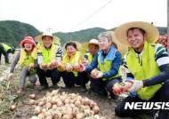 농협, 올해 영농인력 50만명 중개 추진
