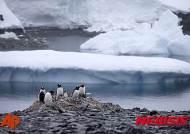 """[올댓차이나]中 부호들 """"유럽여행은 평범···남극으로 가자"""""""