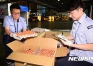 """태국산 달걀 '행방 묘연'···농식품부 """"수입업자, 연락두절"""""""
