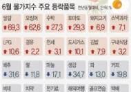 [그래픽]6월 물가지수 주요 등락품목···신선식품 지수 10.5%↑