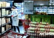 계란가격, 12월 이후에야 안정…정부, 할당관세 재적용해 수입 확대