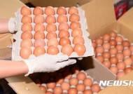 UAE, 네덜란드 '살충제 달걀' 수입 제한