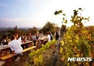[나침반]비엔나 관광청, 이젠 비엔나 와인 시대