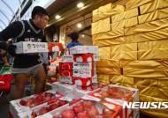 '금사과' 추석 앞두고 급등하는 과일가격