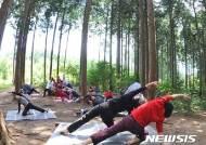 황금연휴는 편백 숲 우거진 '산림욕 성지' 장성에서