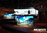 닌텐도·소니의 명예회복…日 전자산업 부활하나?