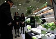 친환경 채소 재배기 보는 관람객들