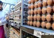 맥반석 계란서도 '피프로닐 설폰' 검출…회수·폐기 조치
