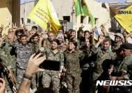 이슬람국가, 시리아·이라크 지배지 98% 뺏겨...잔당 3000명