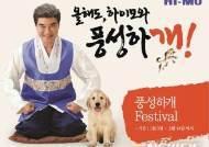 하이모, 신년맞이 '풍성하개 페스티벌' 실시