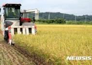'쌀값 회복' 변동직불금 '뚝'…전남 1161억원 설 전 지급