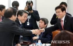 국회 헌정특위 헌법개정소위, 정부형태 분야에 대한 논의