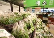 [생활물가동향]채소류 하락 안정...돼지고기 값 사육두수 증가로↓