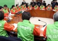 """평화당, '4조원대 일자리 추경안' 비판…""""재정만능주의"""""""