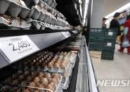 계란값 폭락으로 2000원 대 계란 '등장'