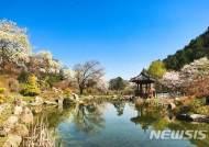 가평 아침고요수목원 '봄나들이 봄꽃축제'