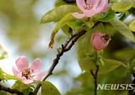 맑고 화창한 봄날씨…한낮 따뜻해도 일교차 커