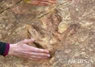 미 유타주 공룡발자국, 관광객에 파괴당해 호수에 던져져