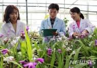 영동군 농업기술센터, 유리온실 다목적 활용 '눈길'