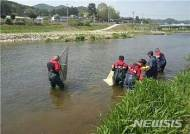 유기농 비료공장 화재후 인근 하천서 물고기 떼죽음...郡·警 조사