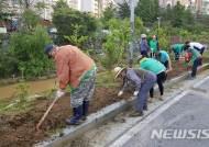 제초작업하는 충주 교현안림동 새마을협의회원들