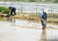 '소만' 충북 맑은 날씨…낮 21~24도