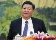 """전문가들 """"북미회담 최대 승자는 시진핑…中 역할 강화"""""""