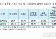 """서울 도·소매업 소상공인 72%, 근로자 임금보다 못 벌어"""""""